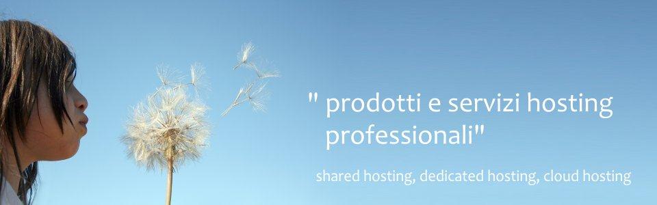 stt hosting solutions